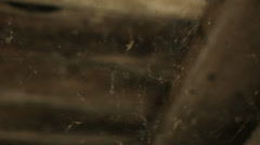 Cobweb Covered Ceiling - 29,97FPS NTSC Stock Footage