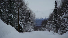 Snowy Scenic Road Surrounded by Trees with Mountain in the Distance Stock Footage