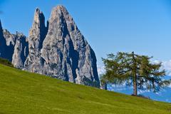 Dolomites, Seiser Alm - Italy - stock photo