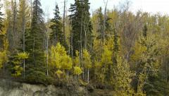 Pan Right Early Autumn Trees on Bluff Stock Footage