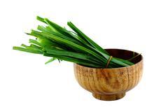 Fresh healthy bio leek Stock Photos