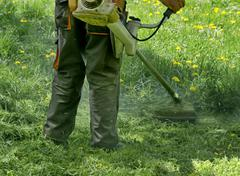 Experienced worker cut grass Stock Photos
