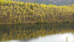 Early Autumn Forest Reflected in Calm Lake Stock Footage