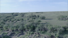 Grassland Stream Stock Footage