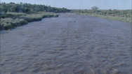 Stock Video Footage of Grassland Stream Hippopotamus