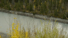 Tilt Up River, Autumn Forest, Snow-capped Mountain Stock Footage