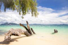 Stock Photo of tropical white sand beach