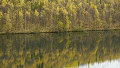 Tilt Autumn Forest, Lake Reflection Stock Footage