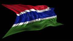 Flag of Gambia Stock Footage