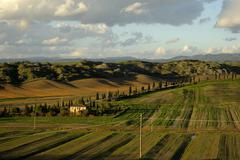 Stock Photo of Tuscan hills