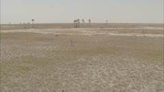 Desert Oasis Sand Arid Humid Stock Footage