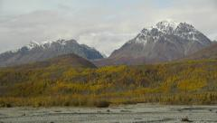 Pan Right Snowy Peaks and Autumn Trees Stock Footage