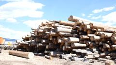 Logs at Lumber Yard Stock Footage
