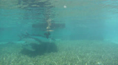 Tarpon By Boat and Dock Stock Footage