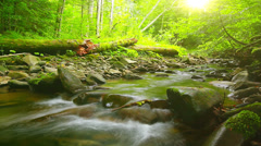 Forest stream - slow motion. three clips. Stock Footage