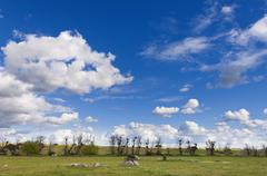 Alentejo landscape - stock photo
