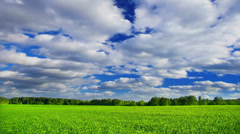 Summer nature, green field landscape with sky and clouds, time-lapse. - stock footage
