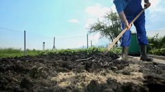 Gardener deploying manure of cow shit - stock footage