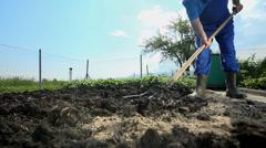 Gardener deploying manure of cow shit Stock Footage