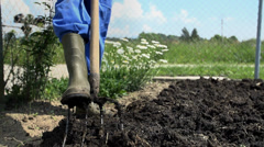 Gardener cleaning boots full of farmyard manure Stock Footage
