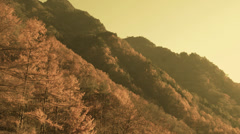 The side of a mountain color graded Stock Footage