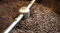 roasted coffee beans in the machine 3 HD Footage