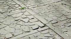 Panning around stoned pavement Stock Footage