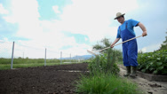 Stock Video Footage of Using the rake to evenly distribute around the plowed garden soil