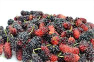 Stock Photo of mulberries