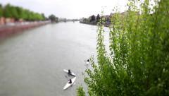 People canoeing in Adige river, Verona, Italy. Stock Footage