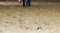 Soft yellow sand and feet of walking horse with tied up pasterns Stock Footage