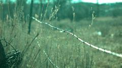 Barbwire in Field - stock footage