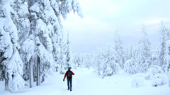 Male achieving his goals forest walking in winter snow Riisitunturi NP Lapland - stock footage