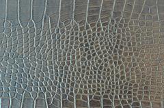 Crocodile Skin - stock photo