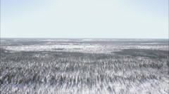 Frozen Tundra - stock footage