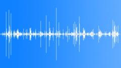 Wood Crunching Sound Effect