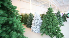 Shop with rows of many different artificial Christmas trees - stock footage