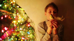 Handsome boy decorates Christmas tree by toy bird at evening Stock Footage