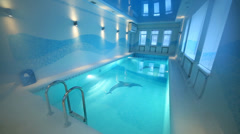 Indoor pool with images of dolphins at bottom and clear water Stock Footage
