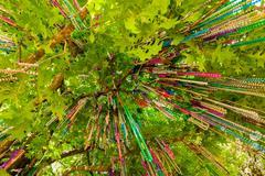 Mardi Gras helmiä Kuvituskuvat