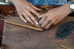 A young cigars turner in the routine work. - stock photo