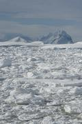the mountains of the antarctic. - stock photo
