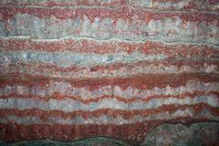 Potash salt mine wall - stock photo