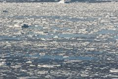 southern ocean off the coast of antarctica. - stock photo