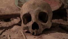 Stock Video Footage of Human skull