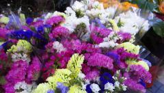 Flower market Stock Footage