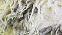 Artificial fur texture Stock Footage