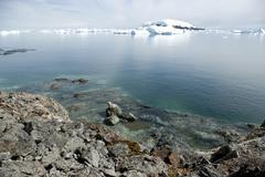 Strip tide when the tide antarctic summer. Stock Photos