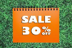 Stock Photo of 30% Sale sign on grass background