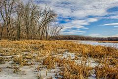 Winter at the Marsh - stock photo
